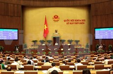 NA passes resolution on Long Thanh International Airport