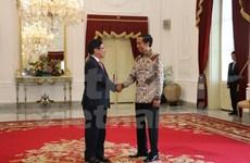 Deputy PM Pham Binh Minh meets Indonesian President