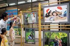 Various activities mark Vietnam Family Day