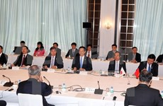 Vietnamese leader talks with Japanese enterprises