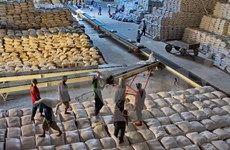 Vietnam seeks stronger rice trade with China's Guangdong province
