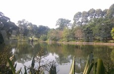 Singapore Botanic Gardens named UNESCO's World Heritage site