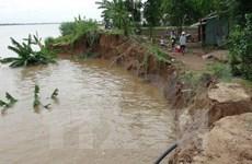 Erosion threatens Kien Giang people's livelihoods
