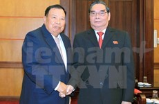 Lao Vice President pledges to foster ties with Vietnam