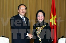 Vietnam to closely work with China to fight corruption