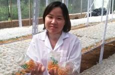 Cordyceps fungus gains wider acceptance