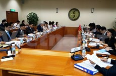 Vietnam-RoK Inter-Governmental Committee meet in Seoul