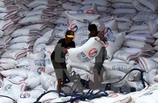 Philippines likely to halt rice imports