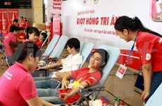 Hanoi donation festival hopes to collect 2,000 blood units