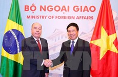 Vietnam, Brazil enhance comprehensive cooperation