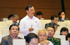 Deputies debate bill on structure of local government