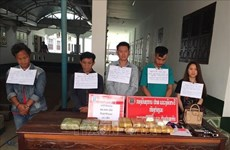 Vietnam, Laos provinces bust cross-border drug trafficking ring