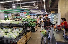 Ho Chi Minh City's March CPI falls 0.58 percent