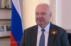 Ambassador hails Vietnam's support for Russia-proposed resolution on Great Victory