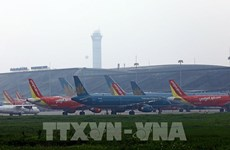 Vietnam suspends Pakistani pilots over fake license concerns