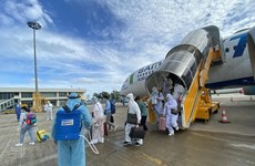 Over 260 Vietnamese citizens repatriated from UAE