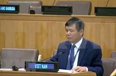 Int'l cooperation, solidarity key to COVID-19 response: Ambassador