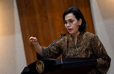 Indonesian minister hails Vietnam's efforts to maintain positive growth
