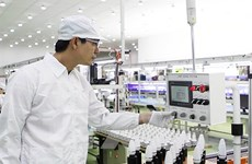 Electronics helps HCM City become leading production centre