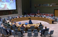 Vietnam calls for resumption of negotiations on Palestine issue