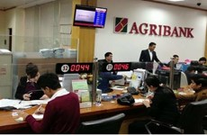 Banks lending big to keep agriculture sector ticking