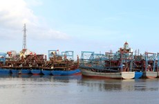 Nam Dinh strives to fight IUU fishing