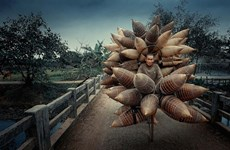 Vietnamese photo named among world's most spectacular travel images