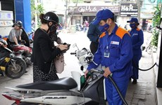 Petrol prices up nearly 1,000 VND per litre from October 11