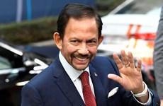 Brunei welcomes ASEAN's progress in COVID-19 fight, economic recovery
