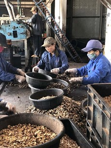 Despite global instability, Vietnam's economy maintains fast growth
