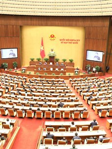 Vietnam meticulously preparing for 15th National Assembly elections