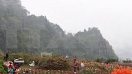 New tourism programmes promise to attract tourists to Yen Bai
