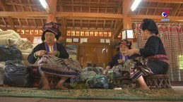 Craft villages in Dien Bien province to be revived