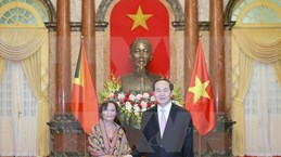 President receives newly-accredited ambassadors