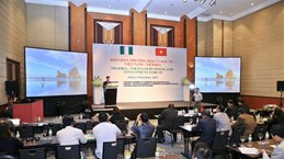 Vietnam, Nigeria firms seek opportunities at Hanoi forum