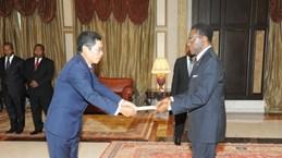 Equatorial Guinea keen on expanding ties with Vietnam