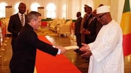 Malian President keen on boosting partnership with Vietnam