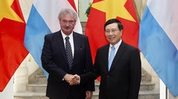Vietnamese, Luxembourg FMs review bilateral ties during talks