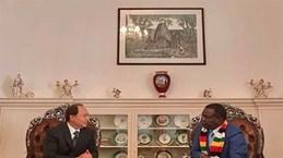 Zimbabwe, Vietnam should build on traditional ties: President