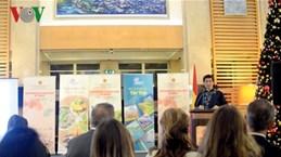 Embassy hosts Vietnamese Cultural Days in Turkey