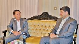 Modern media's potential should be optimised: IRNA Managing Director