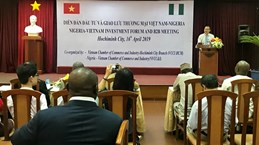Vietnam, Nigeria seek stronger investment, trade ties