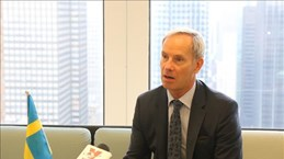 Vietnam has good chances to come to UNSC: Swedish diplomat