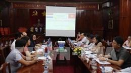 Netherlands eyes cashew industry in Binh Phuoc