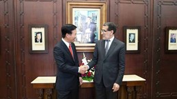Vietnam, Morocco eye stronger multifaceted cooperation