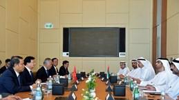 Vietnam, UAE determined to raise trade to 10 billion USD