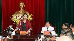Vinh Long urged to step up economic strategic breakthroughs