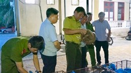 Couple arrested on suspicion of transporting 150 kg of wild animals