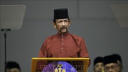 Brunei hails important role of ASEAN's partner countries