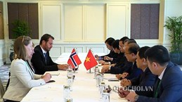 Vietnamese, Norwegian parliamentarians talk bilateral ties